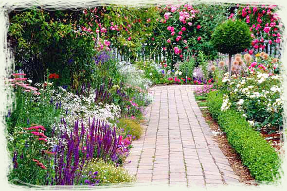 Perennial Flower Garden Ideas Photograph | flowers-