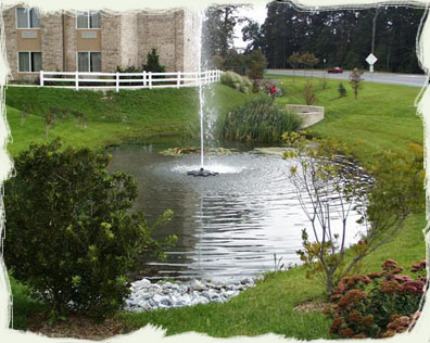 Storm water pond maintenance for Stormwater pond design